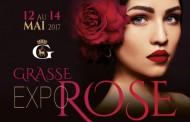 Grasse   Expo Rose 2017