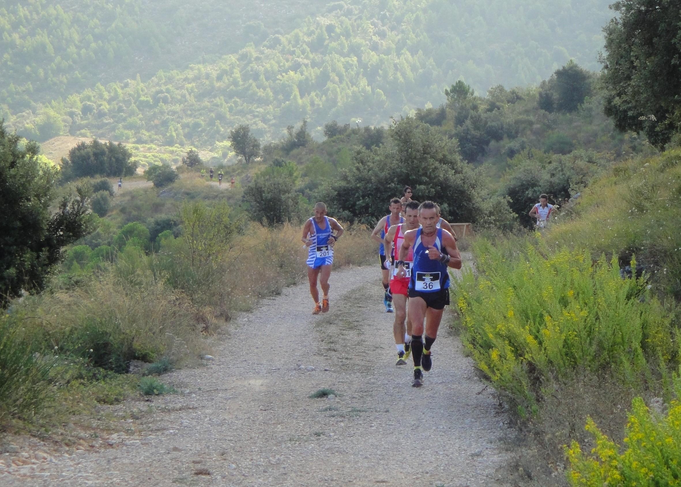 Course du Trophée 2014 3