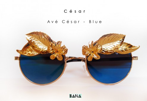 Ave-Cesar-Blue-1-495x341