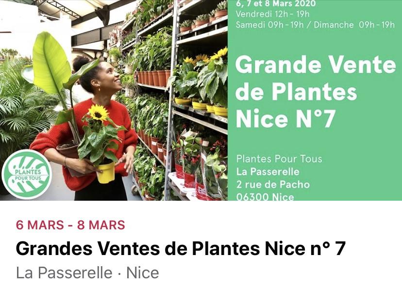Vente de plantes n°7