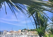 ete-a-cannes
