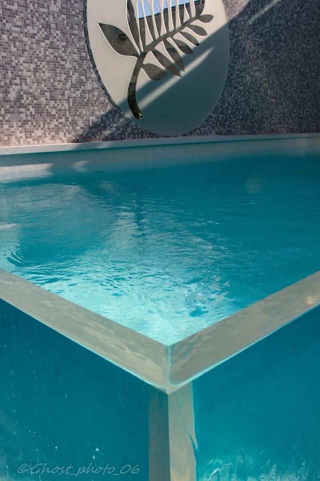 piscine-palme