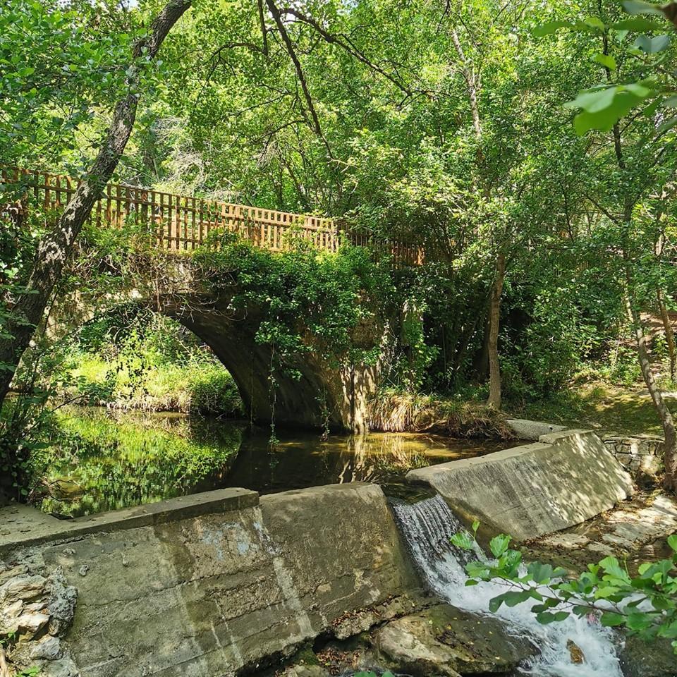 pont-bois-brague