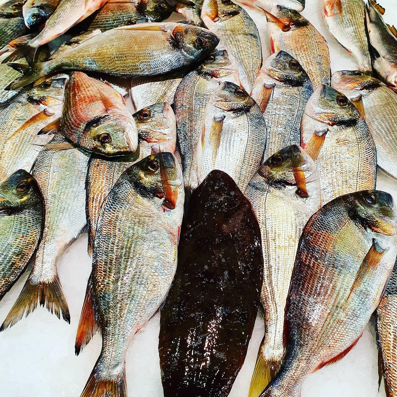 bistrot-gourmand-poisson