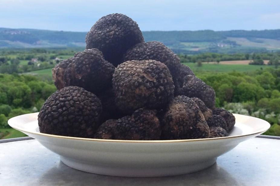 truffesnoires
