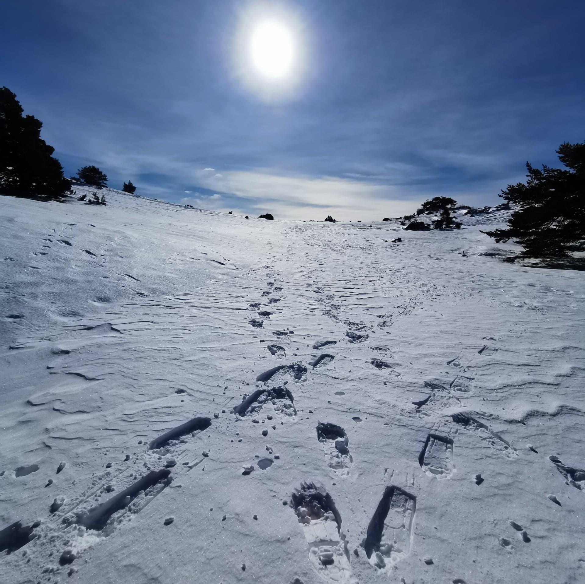 pas-neige-auudibergue