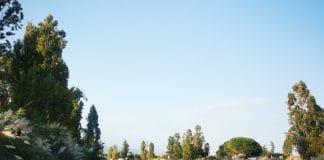 berges-siagne-mandelieu